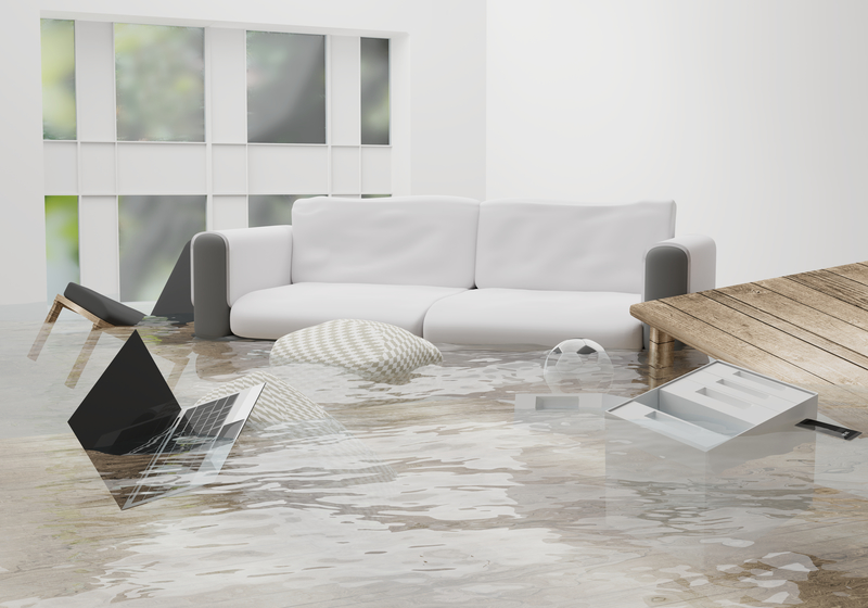 What You Need to Protect Your Home from the Elements