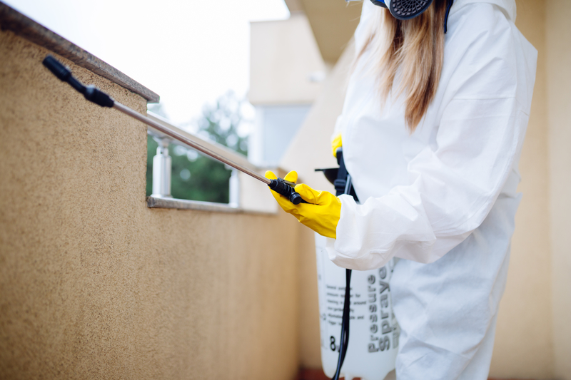 How to Minimize Damage to Your Property